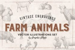 Farm Animals – Vintage Engraving Illustrations 01