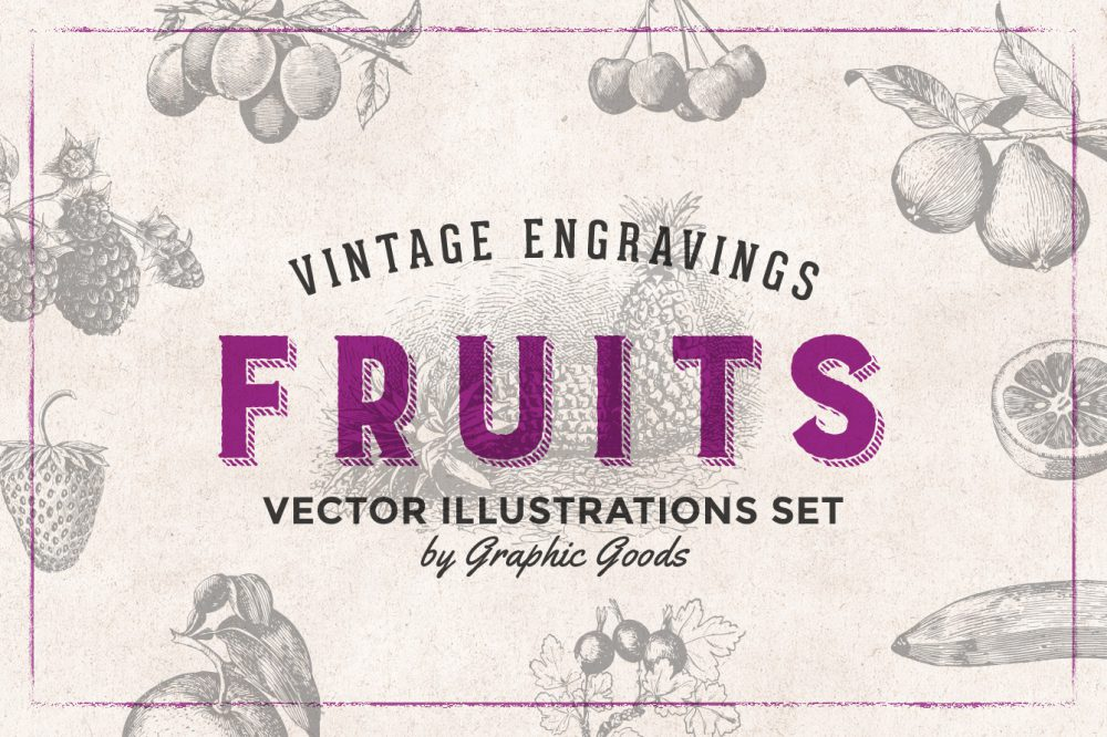 Fruits – Vintage Engraving Illustrations 01