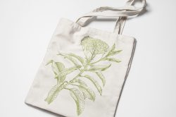 Leaves & Twigs – Vintage Engraving Illustrations 09