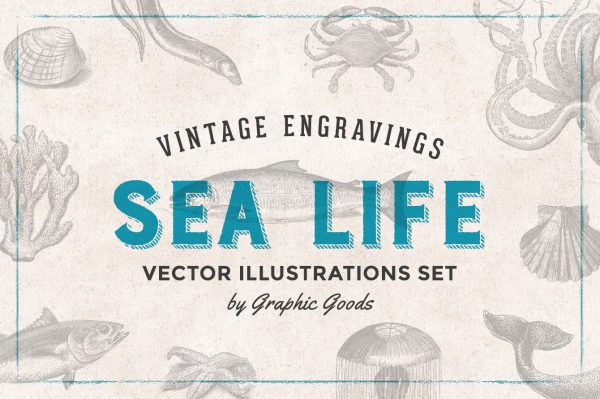 Sea Life – Vintage Engraving Illustrations 01