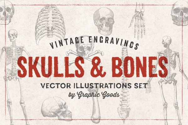 Skulls & Bones – Vintage Engraving Illustrations 01