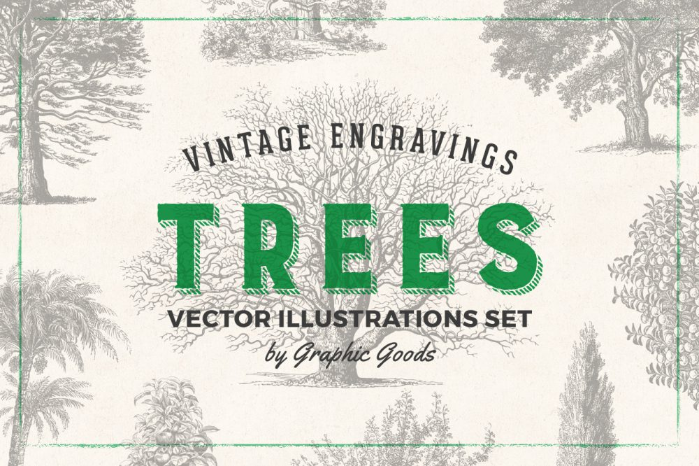 Trees – Vintage Engraving Illustrations 01