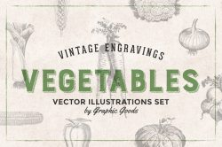 Vegetables Engraving Set 01