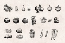 Vegetables Engraving Set 02