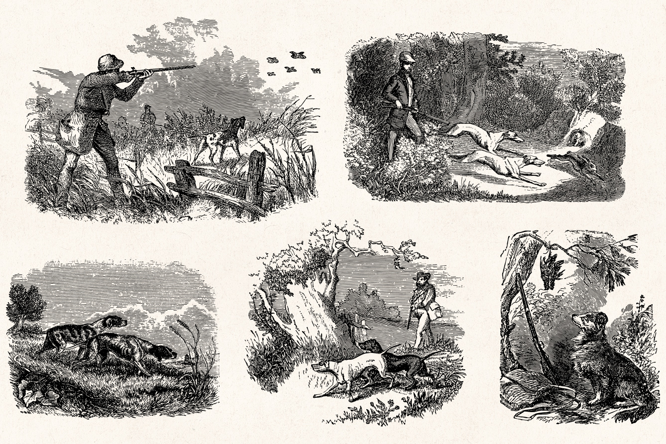 Hunting , Vintage Engraving Illustrations , Graphic Goods