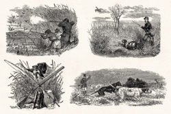 Hunting – Vintage Engraving Illustrations by Graphic Goods 12