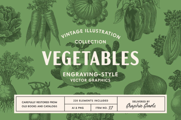 220 Vintage Vegetable Illustrations by Graphic Goods 01