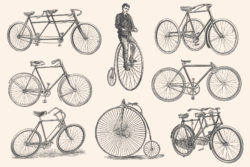 Bicycles – Vintage Illustration Set by Graphic Goods 03