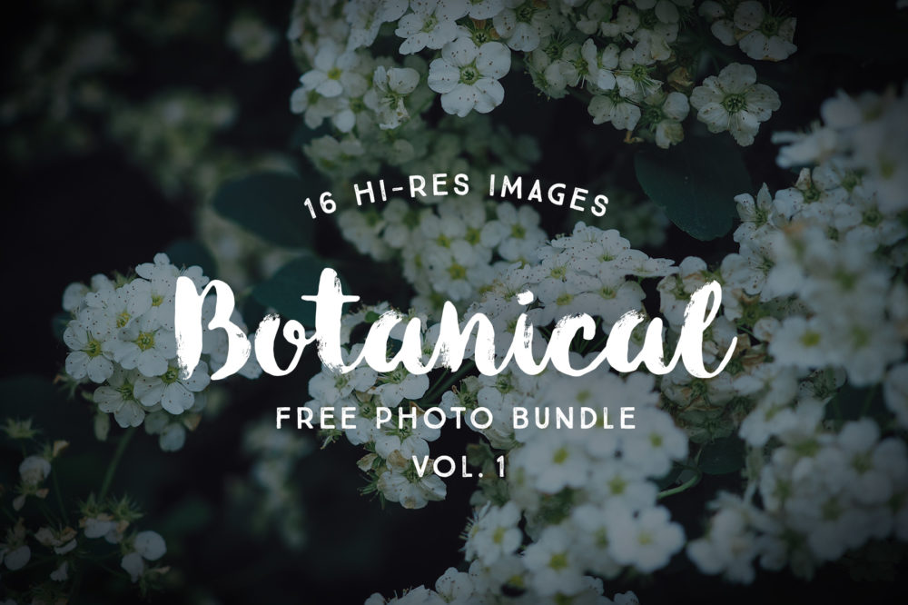 Free Botanical Photo Bundle by Graphic Goods 01