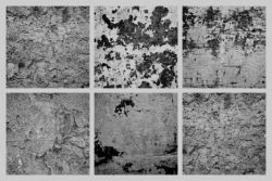 Grunge Concrete – Free Texture Pack by Graphic Goods 03