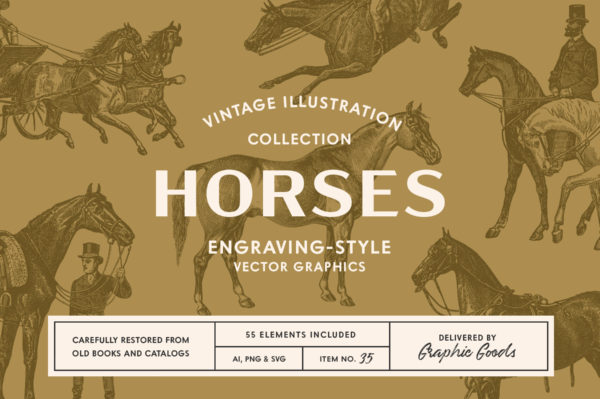 Horses – Vintage Illustration Set by Graphic Goods 01