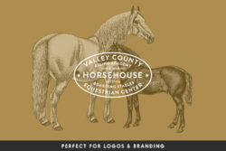 Horses – Vintage Illustration Set by Graphic Goods 07